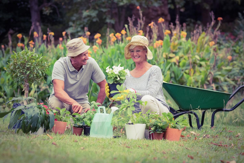 Gardening Seniors